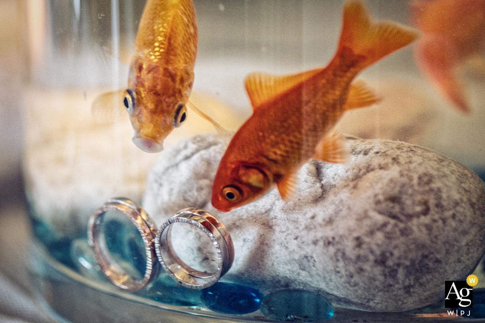 米蘭創意婚紗攝影  金魚缸的圓環細節