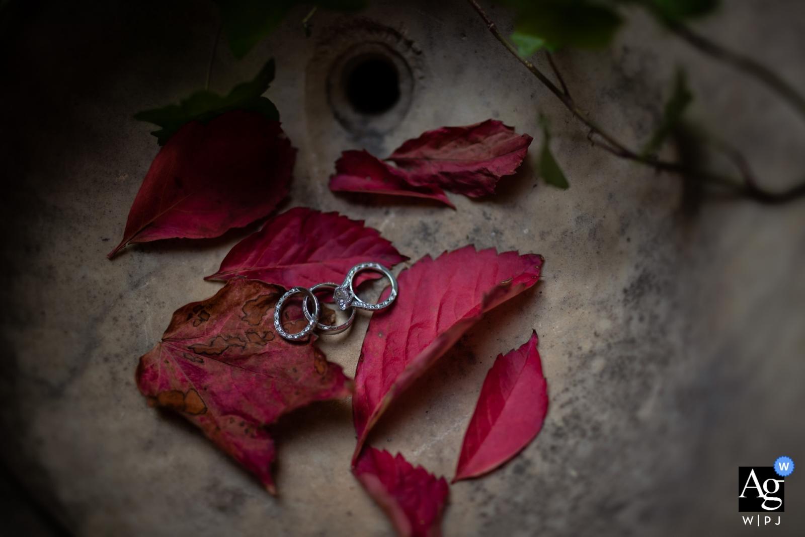 環形佛羅倫薩藝術創造性的攝影細節在紅色葉子的