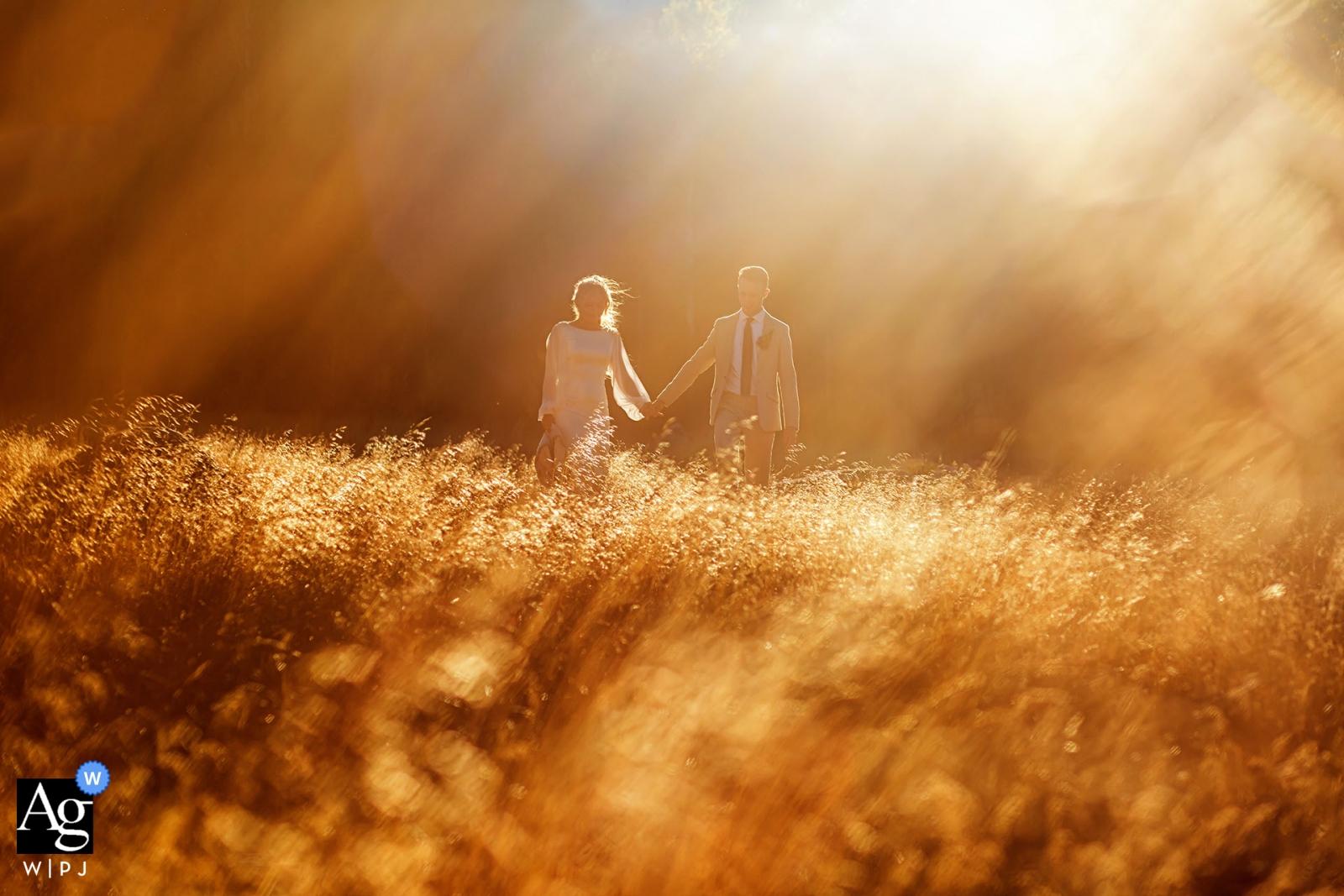 Lake Tahoe-Hochzeitstagpaarporträt auf dem Gebiet mit goldener Sonne und Aufflackern