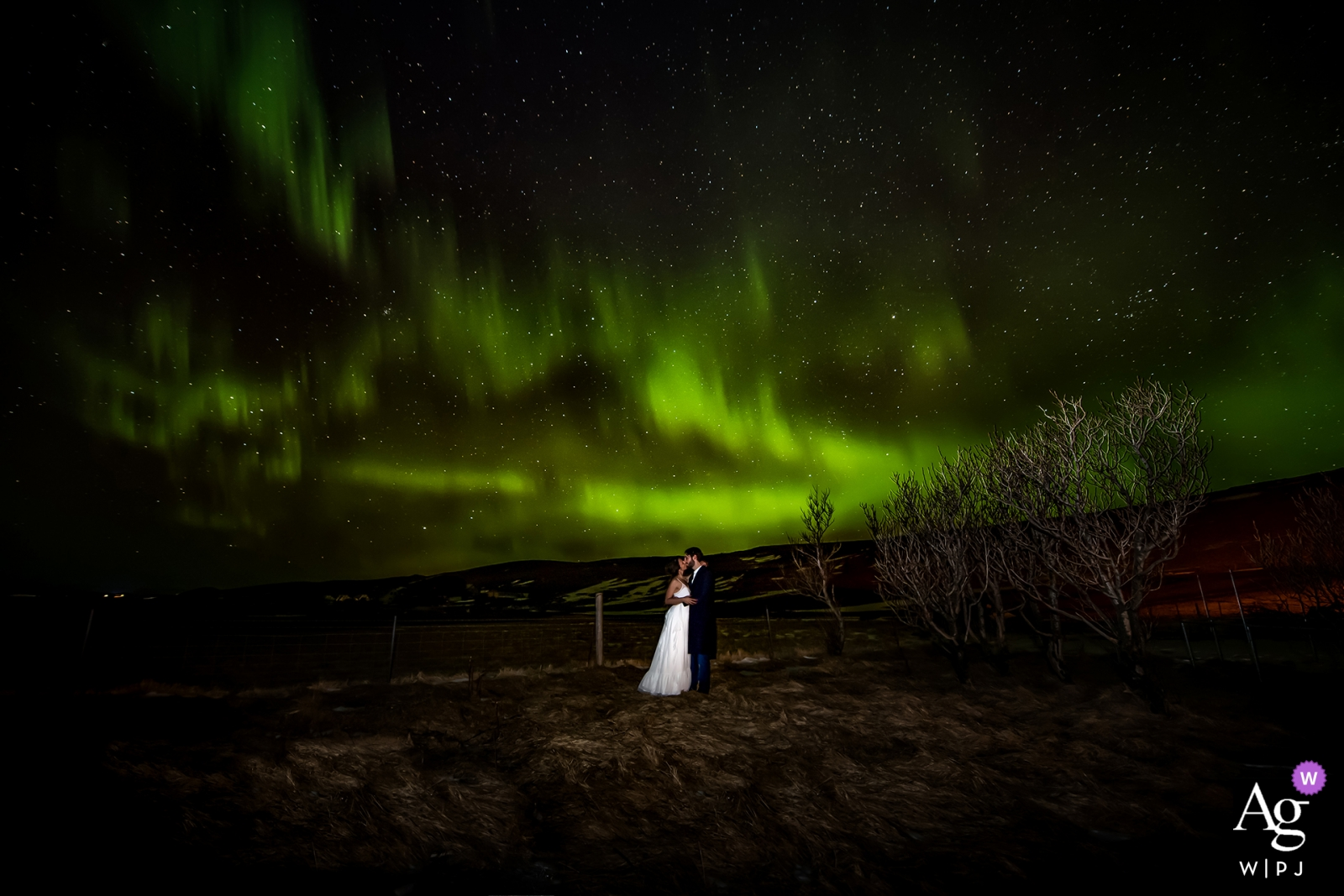 Miami, Florida wedding photo | Portrait at night of bride and groom with green sky in FL