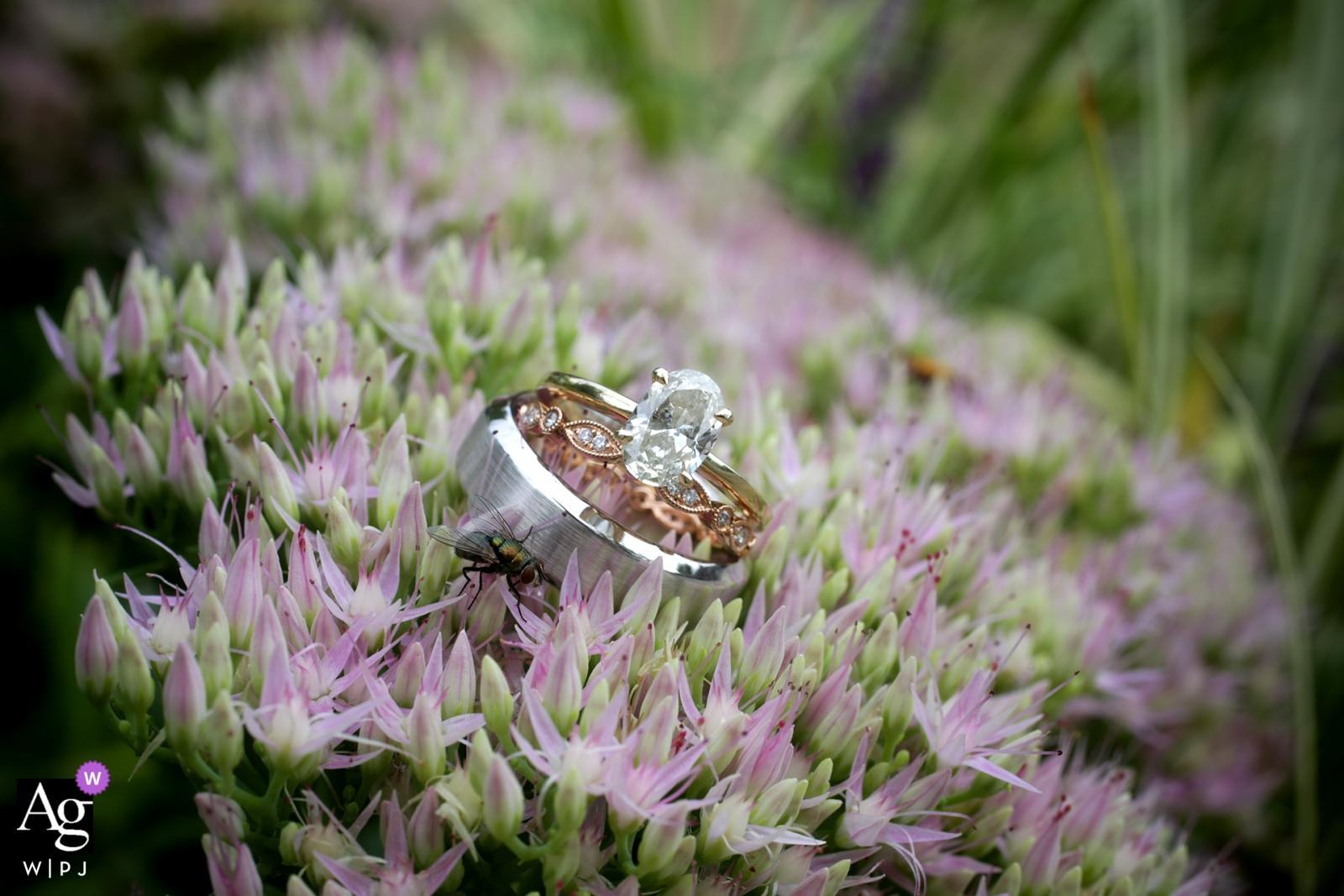 Louisville, KY artistic wedding photo detail of rings on flowers