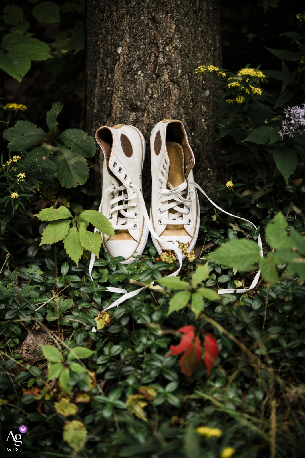 Boston creative wedding photography | detail of high-top shoes next to tree