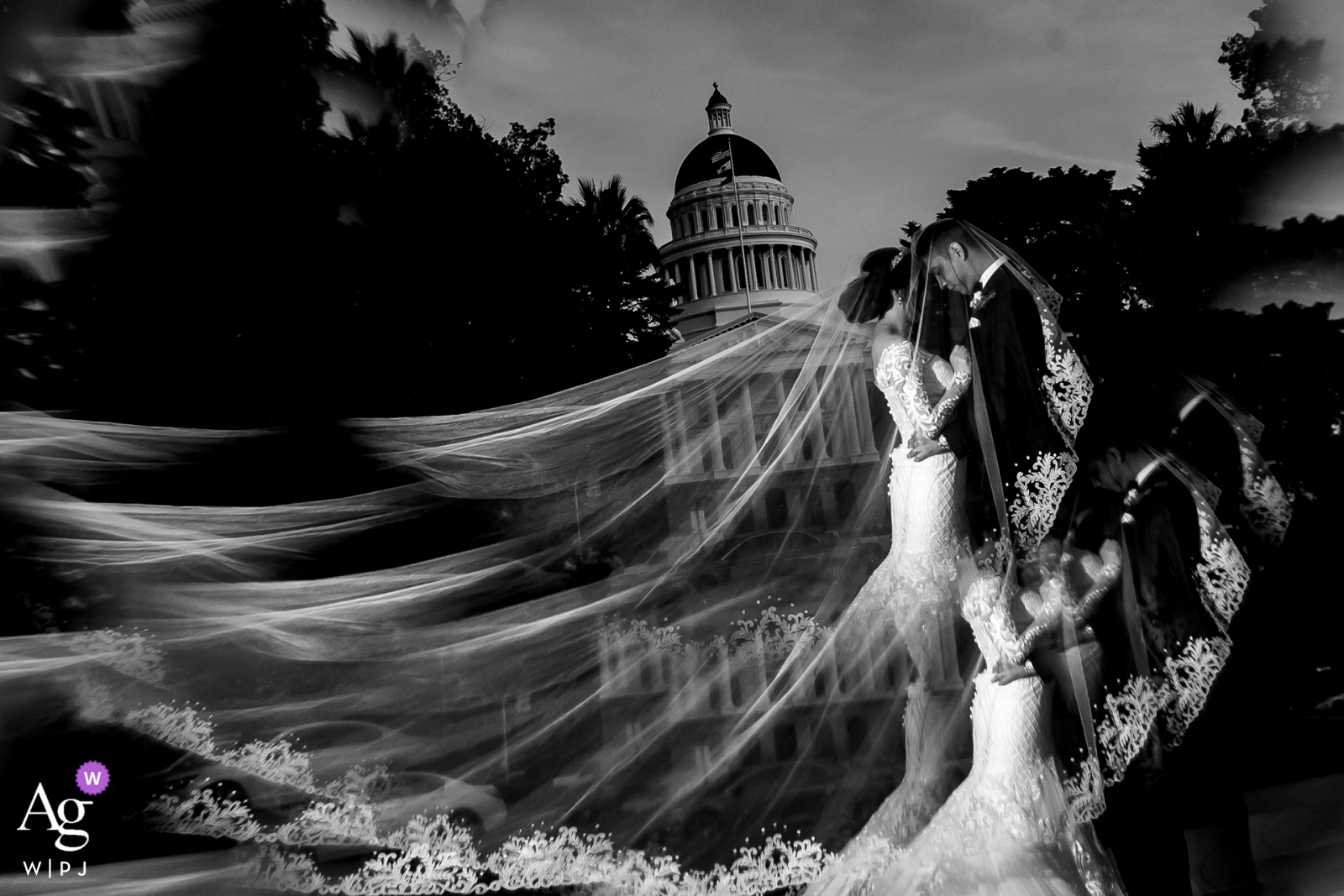 The bride has her veil fanned out in the air for this portrait with her husband in San Francisco after their wedding ceremony