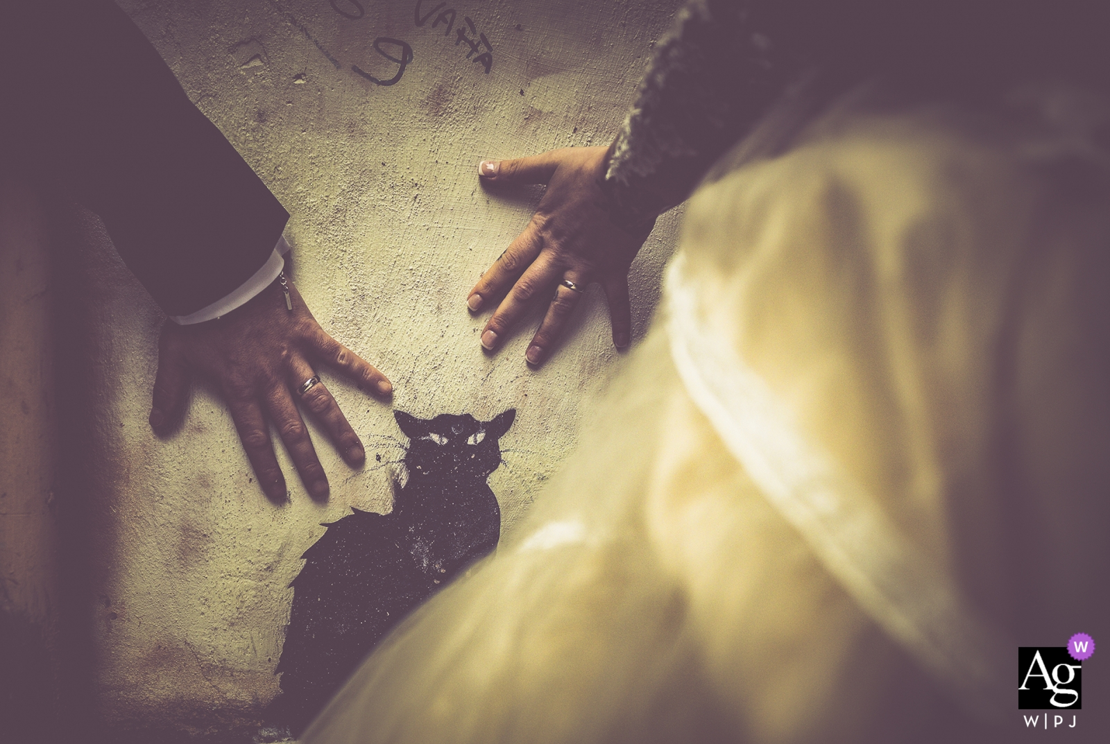 Viareggio detail photograph of the bride and grooms hands - the wedding cat