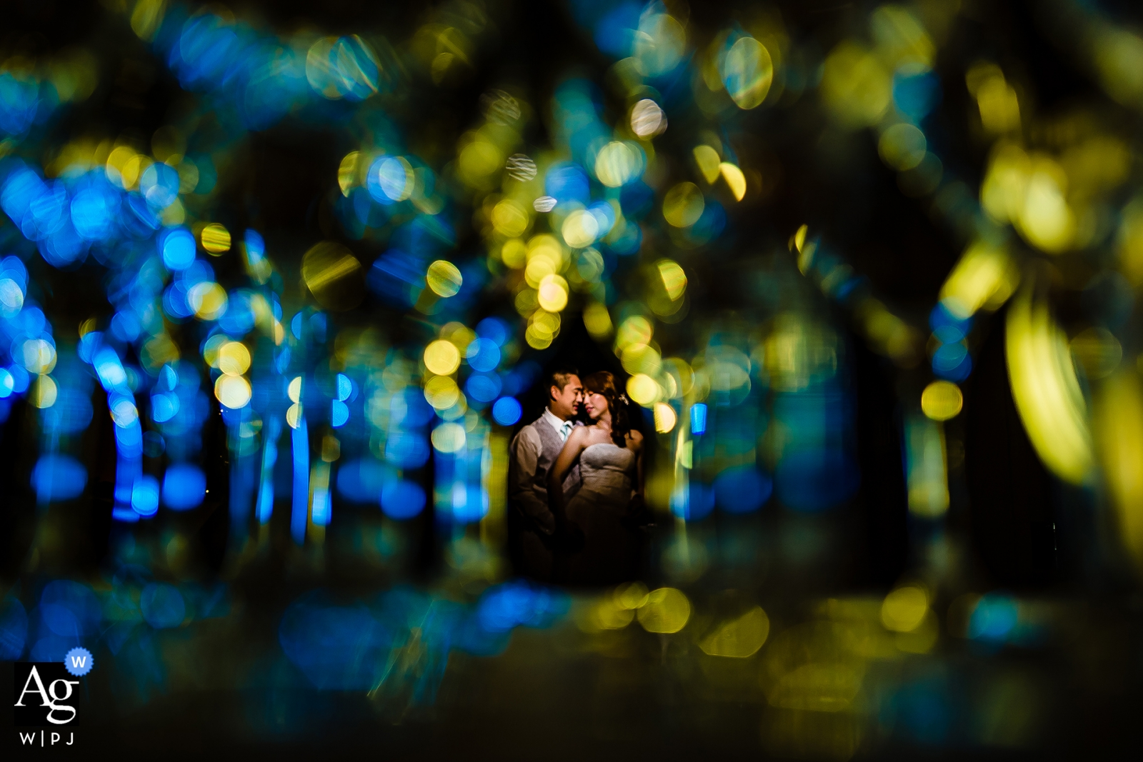 Ritratto di un lago Tahoe sposa e sposo nel giorno del loro matrimonio | Fotografia artistica del ritratto della California del Nord