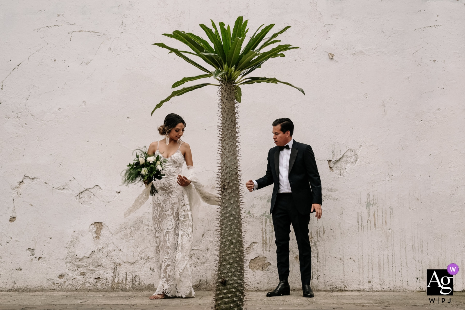 Hotel Azul, Oaxaca, Mexico Wedding Photo of Newlywed portrait on the streets with a single tree