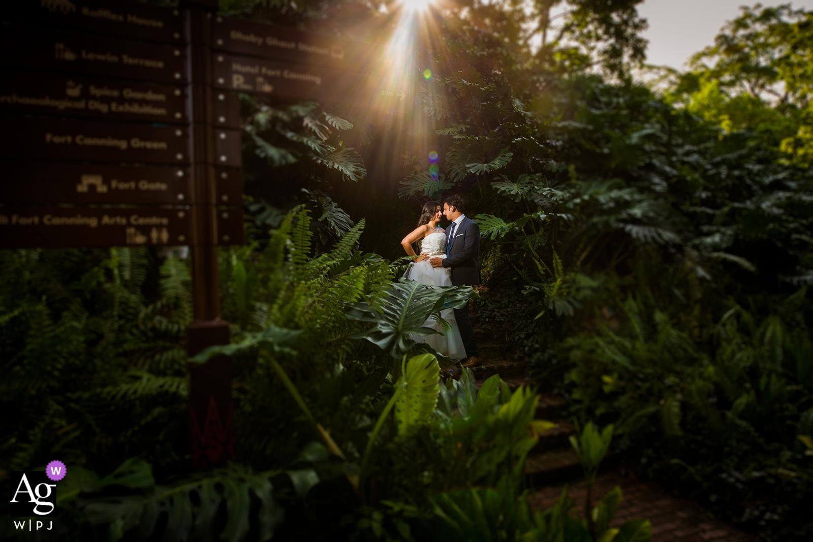 Portrait de mariage à Singapour du couple de jeunes mariés dans les arbres et du soleil les mettant en lumière.