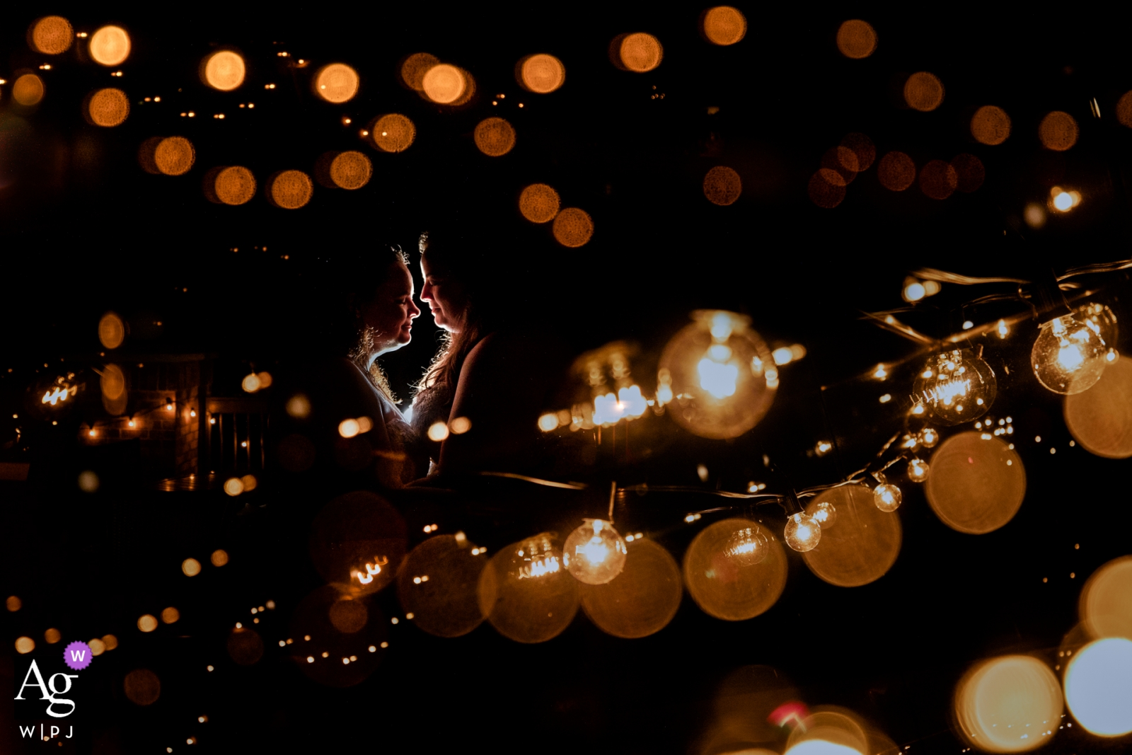 Olympic Hills Wedding Day Pictures | Couple portrait around string lights
