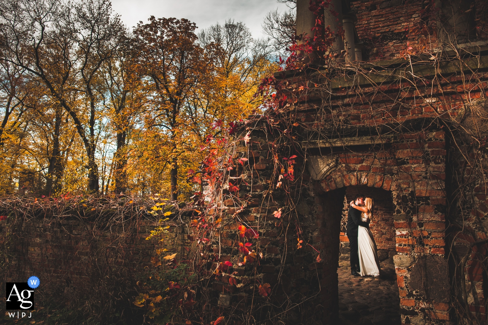 Poland, Lowicz, Park Arkadia Wedding Photography | The kissing couple in a hole in the wall.