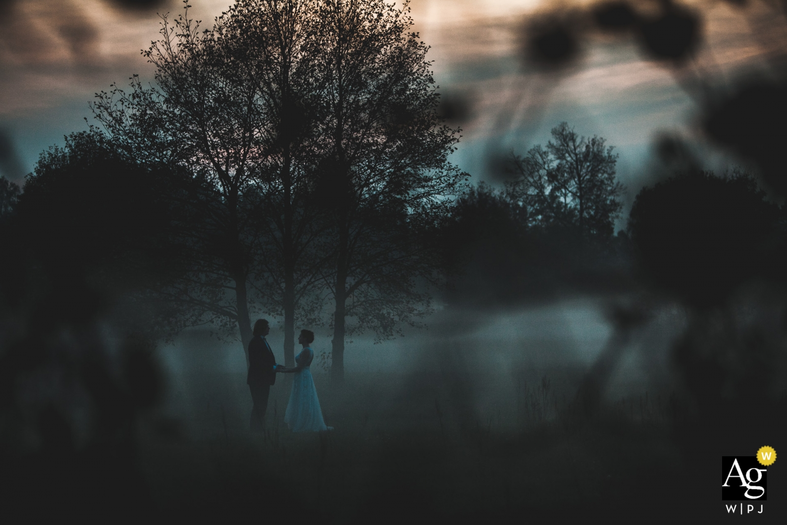 Photographie de mariage - Grotniki, Lodz - Portrait du couple au crépuscule.