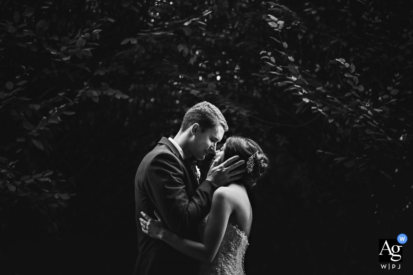 Pictures of the Bride & Groom Kissing after first look - Snug harbor cultural center & botanical garden, Staten Island, NY
