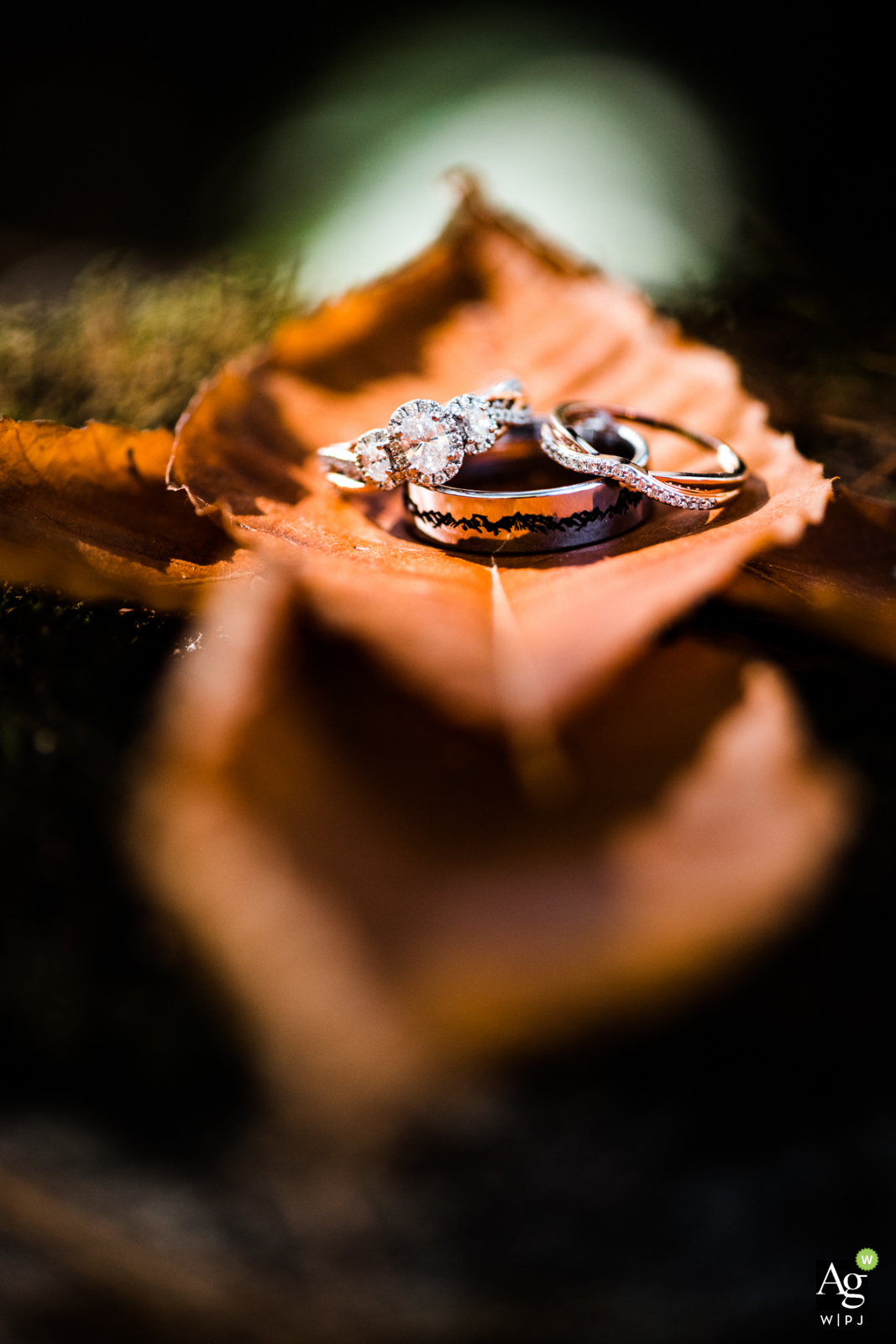 Wedding photo in Massachusetts at grooms family | backyard autumnal rings detail photograph on a leaf