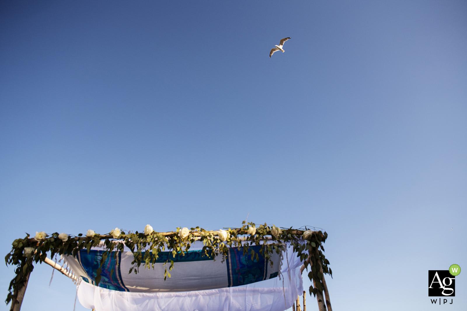 Oceanview - Nahant, Massachusetts outdoor wedding venue photo | Bird flying over chuppah during ceremony