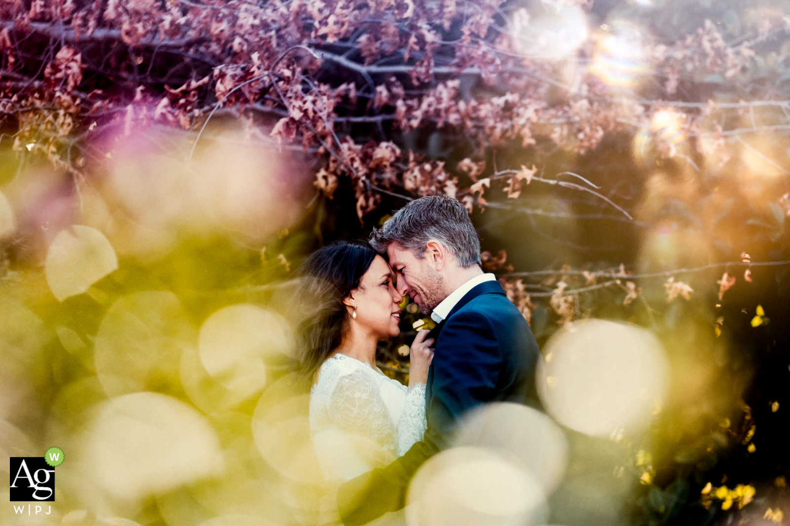 Cape Town fine art wedding portrait image during the late afternoon and the sun shined brilliantly on the leaves, This made for a creative couple portrait when shooting into the sun