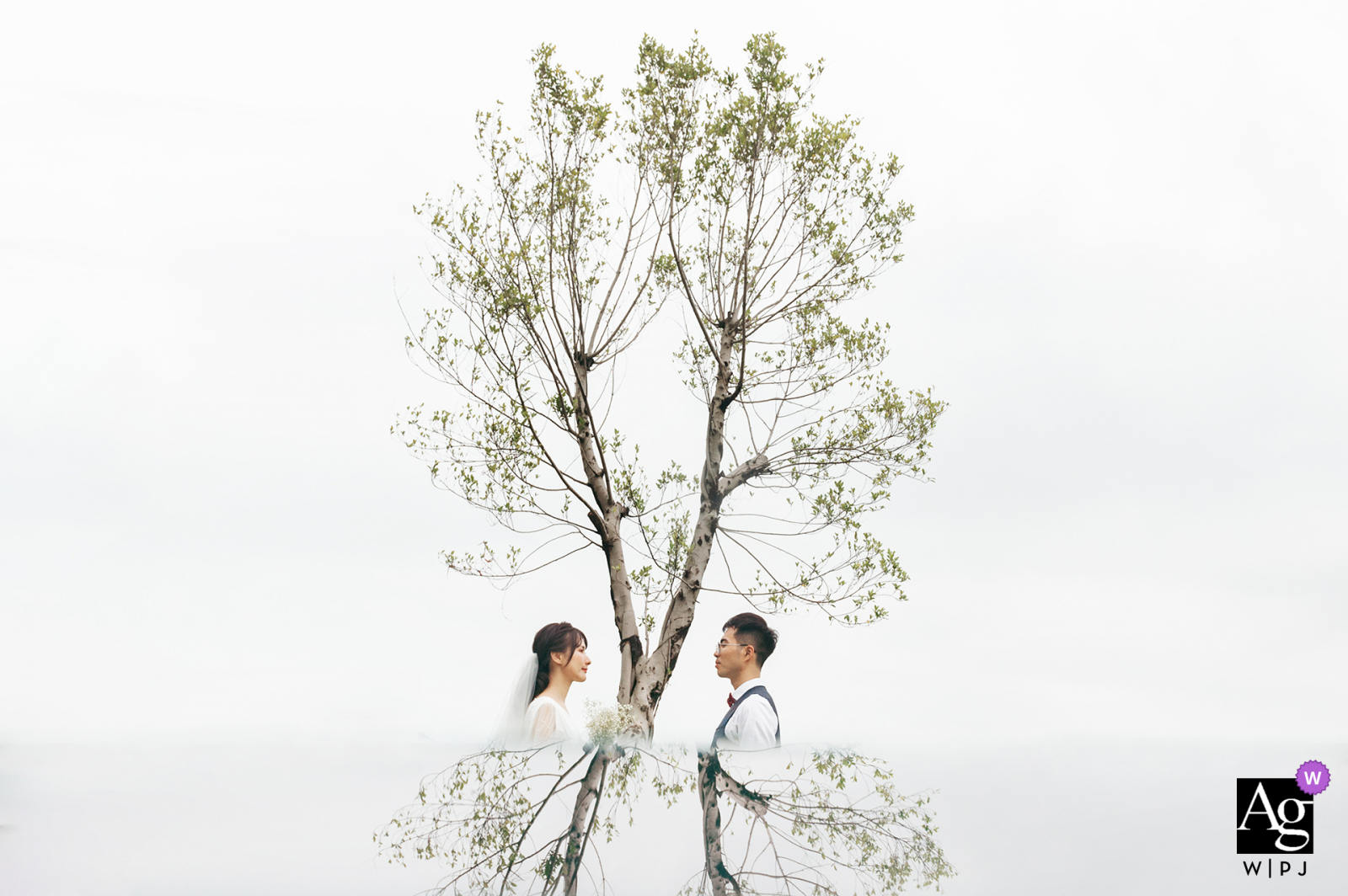 Fuzhou Fujian artistic wedding photo of the bride and groom in white under a tree