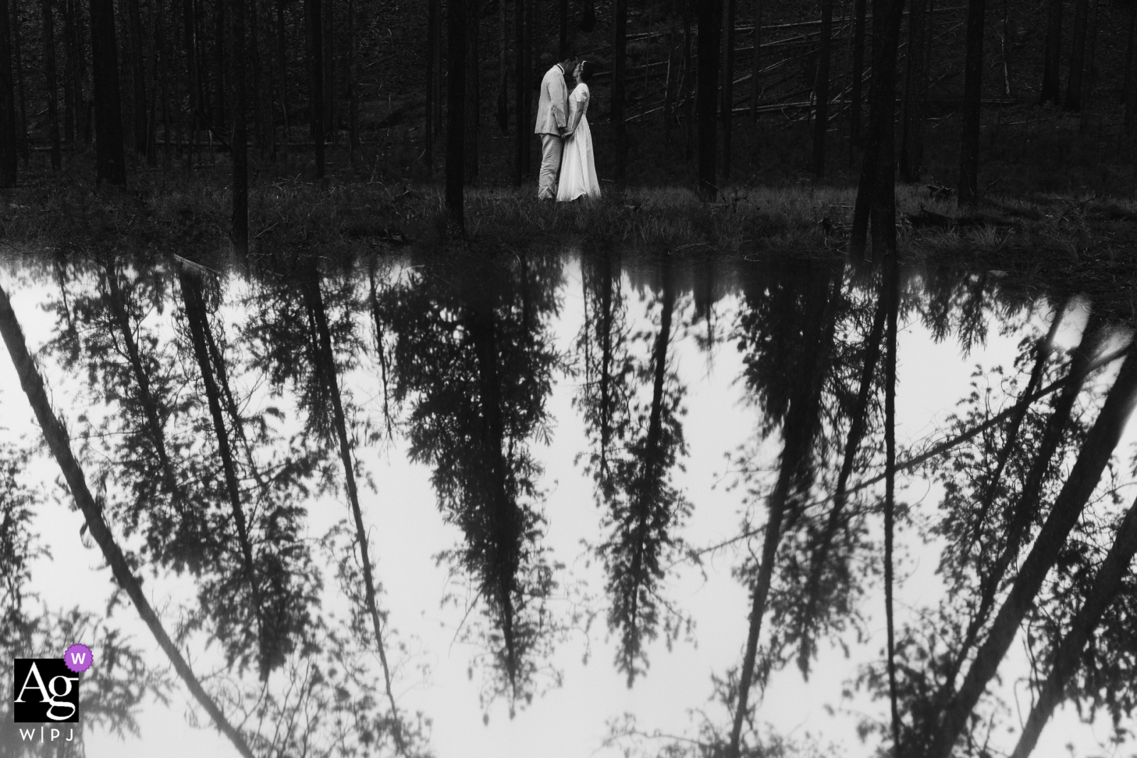 Rock Creek, MT couple portrait in black and white under the tall pine trees with reflections