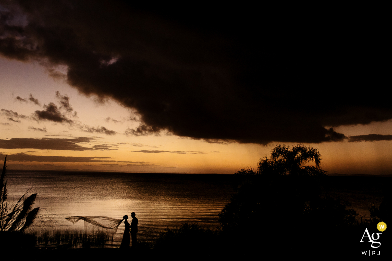 The Butiá after Ceremony Silhouette portrait of the bride and groom in the late afternoon