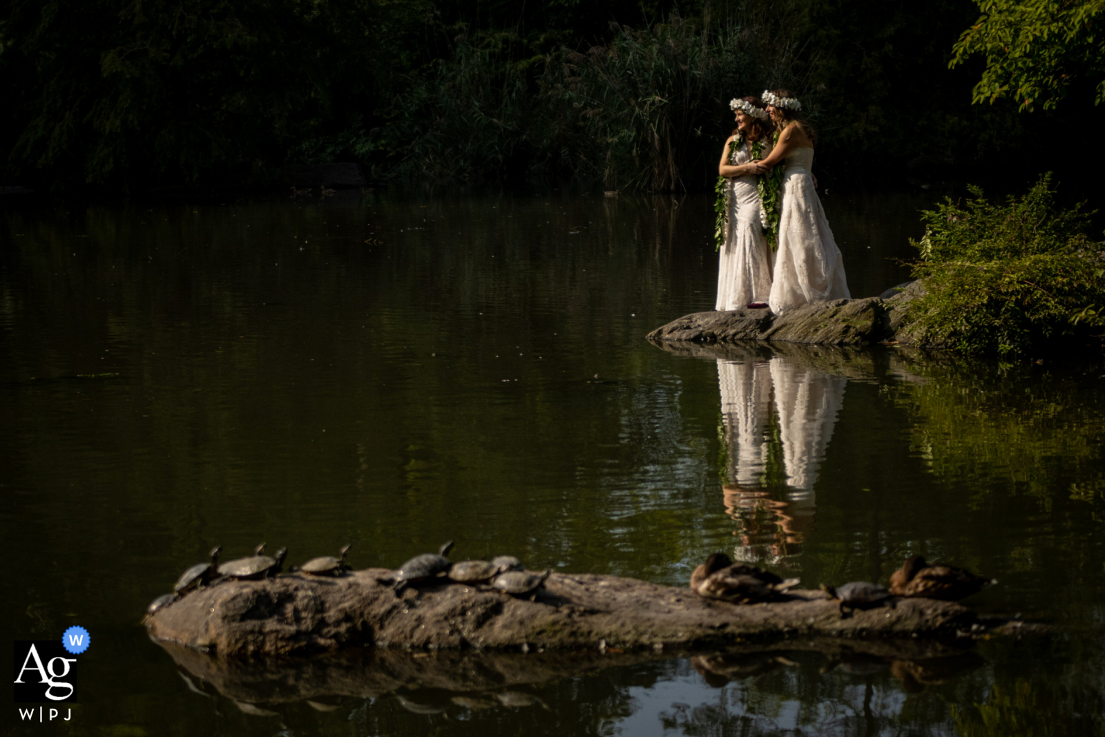 Central Park artistic wedding photos with a beautiful water reflection