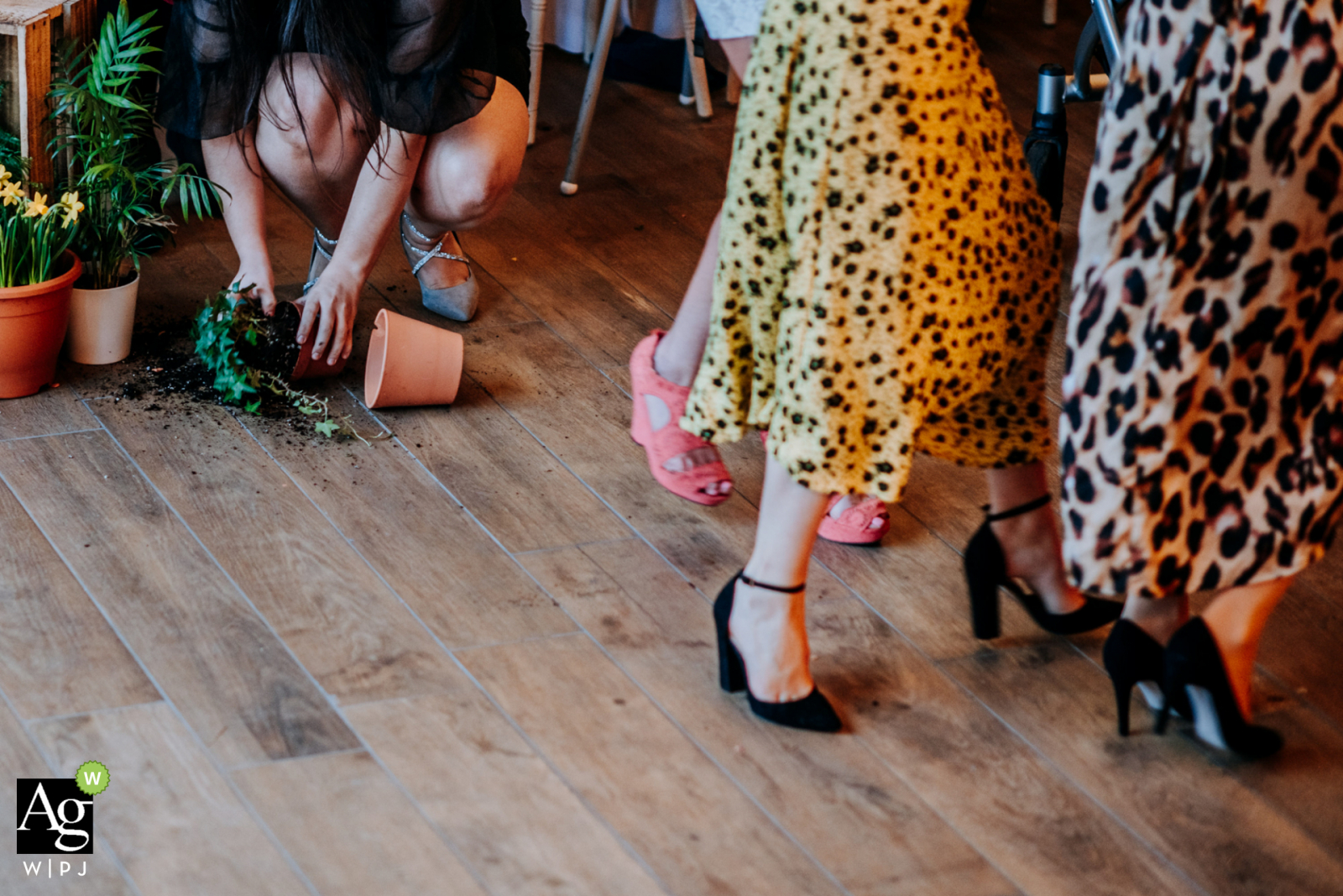 England creative wedding detail photo created as A guest picks up a flower pot smashed by the passing conga line