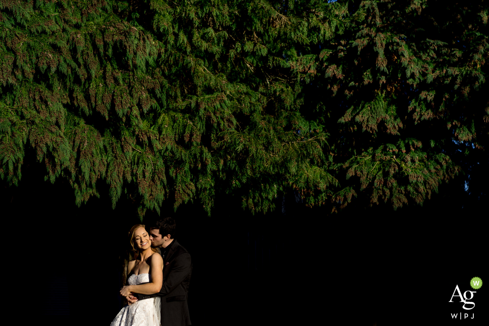 WA wedding portrait at Battleground Churchshowing the Bride and groom embrace with each other