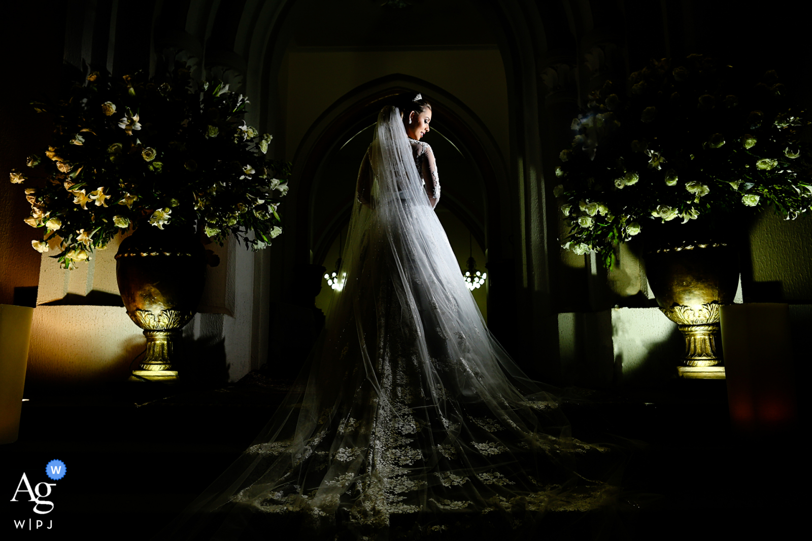 Ipameri creative wedding portrait of the bride