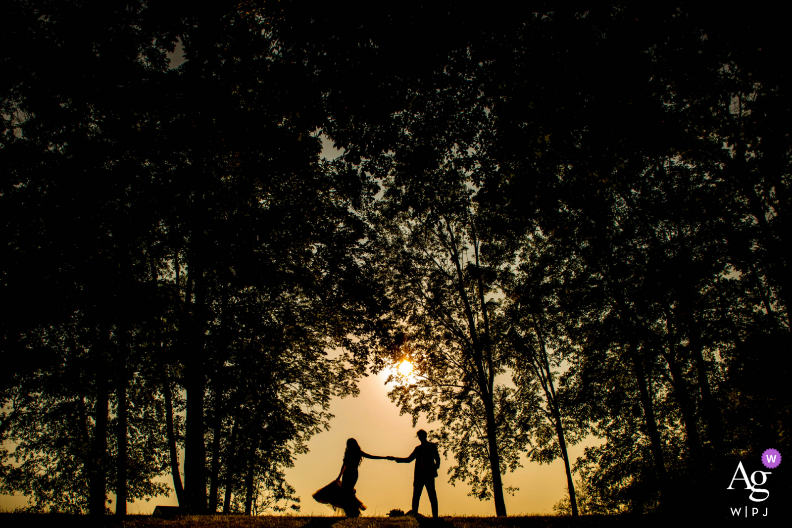 Shadow Creek Winery Wedding Silhouette image in the trees