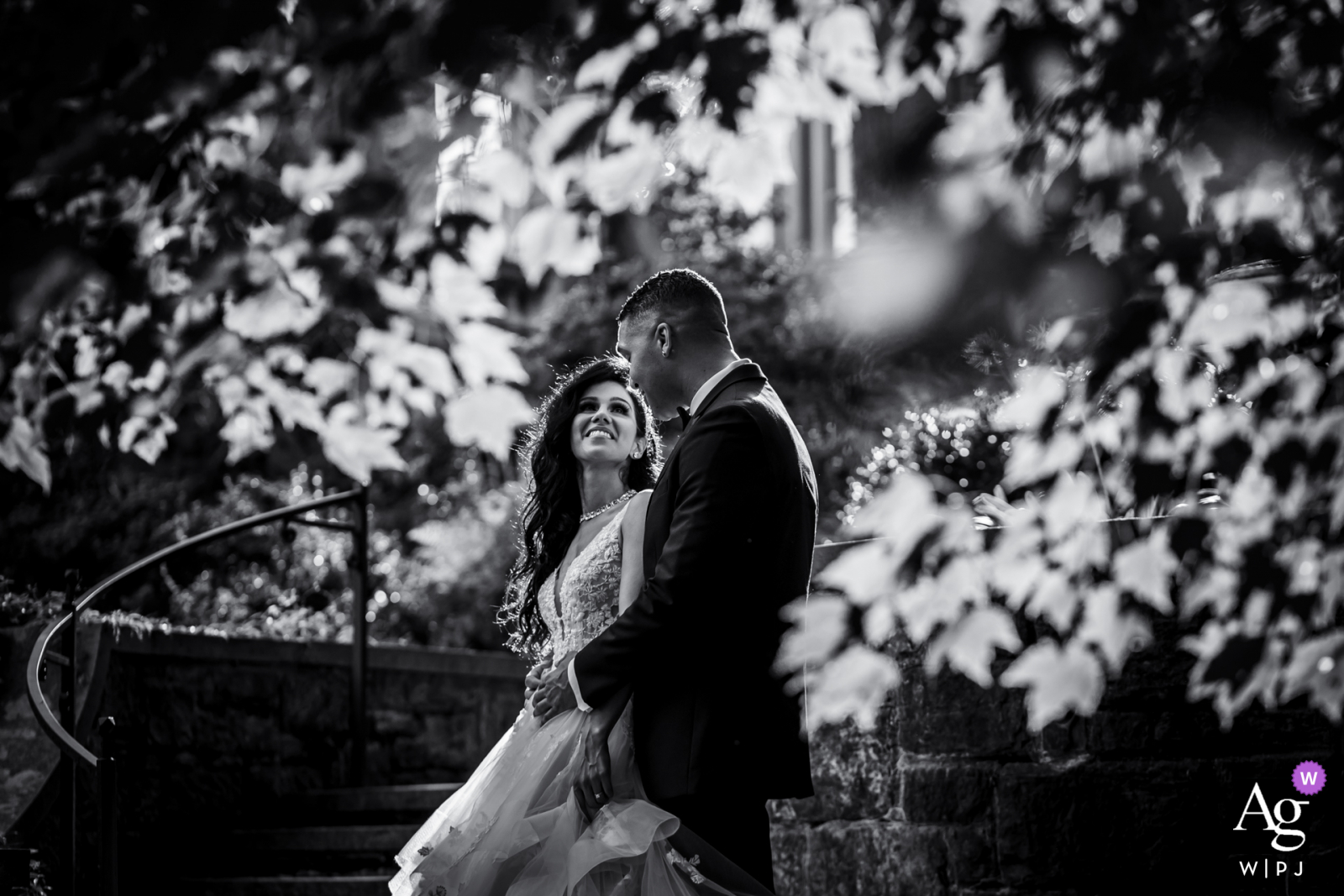 DE artistic wedding photo from Winterthur, in Delaware with a Sunlit, lovely happily married couple
