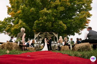 Hidden Meadows Wedding Photography | The bride and groom take their vows underneath the shade of a sprawling tree