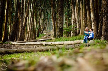 Photographie de fiançailles de mariage dans les bois du lac Tahoe | photographes de fiançailles