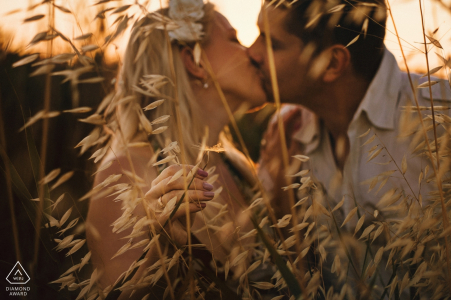Czech Republic engagement Photos - they kiss in the Fields with the warm afternoon sun