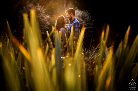 pre-wedding engagement shoot in tall grass with good light | Seattle, Washington portraits
