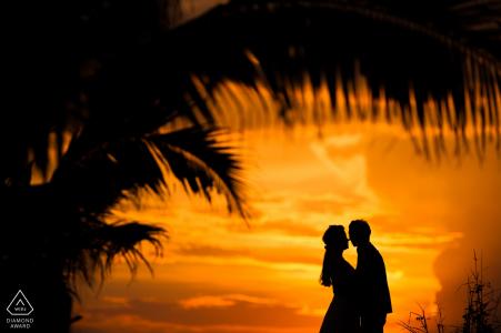 Zhejiang sunset palm engagement engagement shoot avec un couple silhouette   Séance de pré-mariage du photographe de la ville de Hangzhou