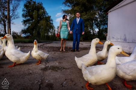 Canard rempli portrait de fiançailles de mariage d'un couple marchant dans le parc   Séance de photographe avant le mariage à Bucarest