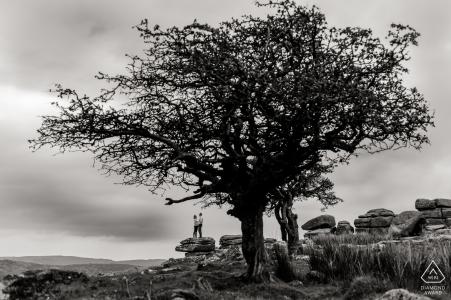 England schwarz und weiß verlobungsbilder von ein paar auf den felsen mit riesigen bäumen   Dorset-Fotografen vor der Hochzeit für Portraits