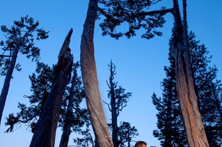 lake-tahoe-engagement-wedding-portrait-photographer-photography-emerald-bay