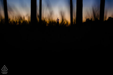 Vermont engagement image of a couple in the tall grass and trees at sunset