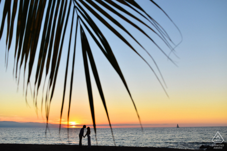 Peninsula Puerto Vallarta, Mexico Portrait Session with Palm & sunset.