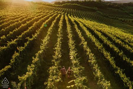 Bento Gonçalves - Brasil pre-wedding portraits - bride and groom running in the vineyards