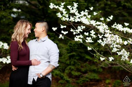 Boston, Massachusetts Couple avec arbre de fleurs dans le parc - séance de portrait de fiançailles
