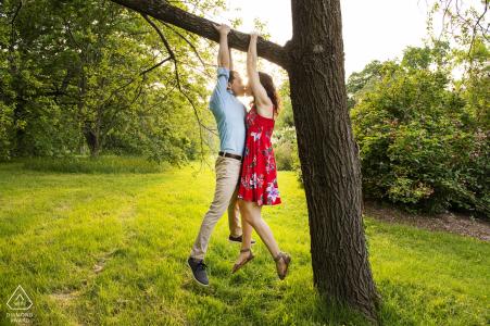 Arnold Arboretum, Jamiaca-Ebene, Massachusetts - Paare, die vom Baumküssen hängen