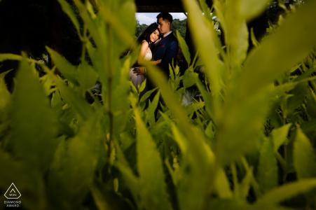 Servizio fotografico per fidanzamento Brookside Gardens - VA