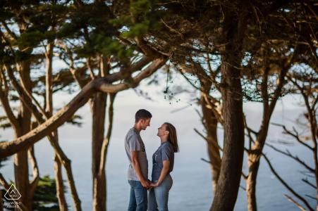 Séance de portraits de fiançailles à San Francisco - Un couple charmant encadré dans un cyprès