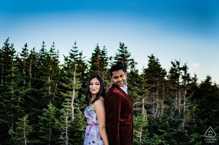 Parc national des montagnes Rocheuses, Colorado - Photos de fiançailles dans les pins