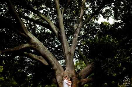 Australie occidentale Perth portraits de mariage avant: une belle photo ensemble sous un arbre géant.