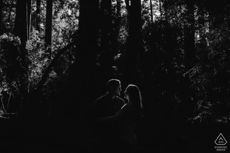 Foto del compromiso del parque estatal Henry Cowell Redwoods | Pareja iluminada por el sol