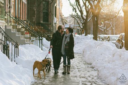 Albany, New York engagement portrait session of a happy couple walking arm in arm with their two dogs down a snowy city sidewalk.