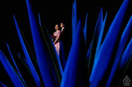 Ho Chi Minh City pre wedding picture - Try something new, like a bush