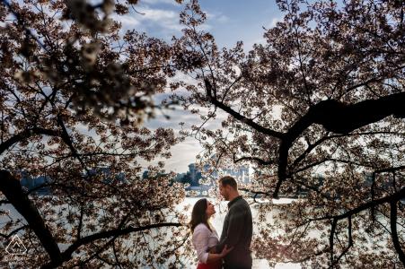 Fotografía de compromiso | Tidal Basin, Washington, DC - Pareja enmarcada por cerezos en flor en DC por Tidal Basin al amanecer.