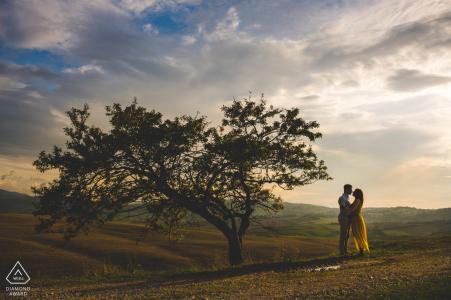 Sesión de fotos de compromiso en el campo de la Toscana - El árbol de la vida