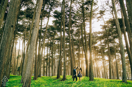 San Francisco, California Forest Light portrait session in the tall trees on the grass